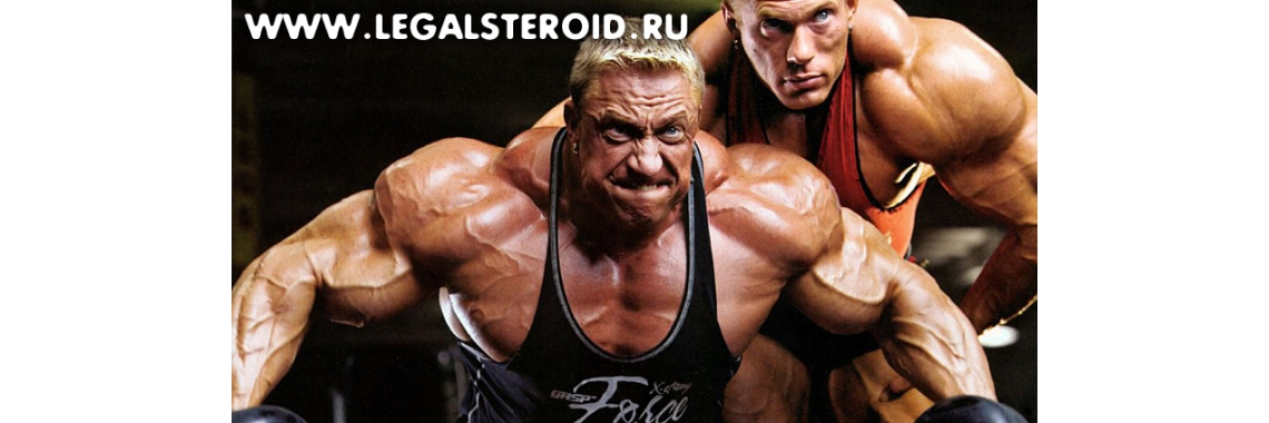 Legalsteroid.ru